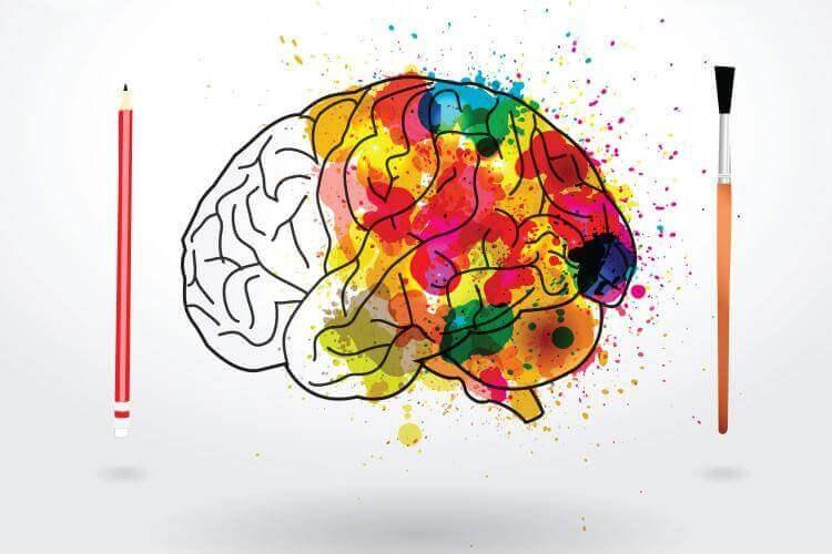 функции психической деятельности