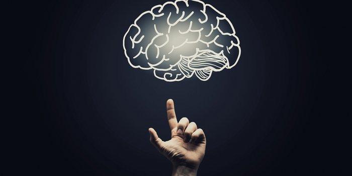 особенности психической деятельности